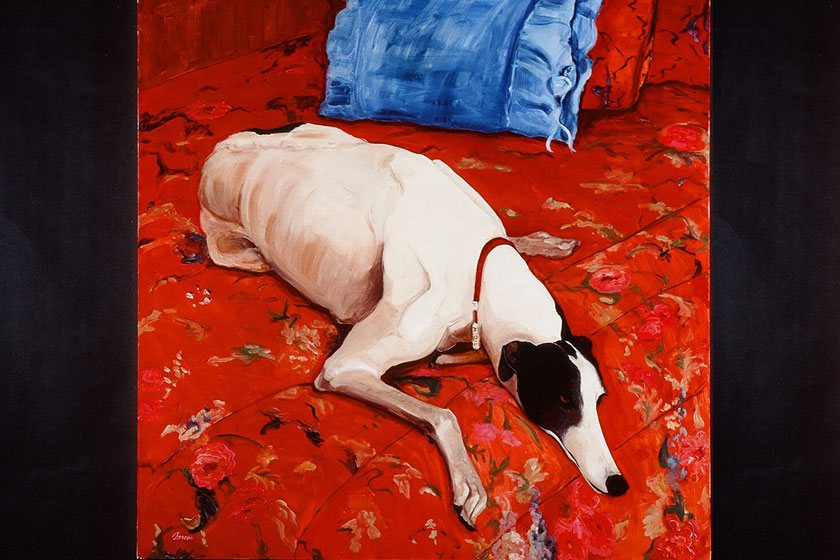 judith-jarcho-molly-in-red-italian-greyhound